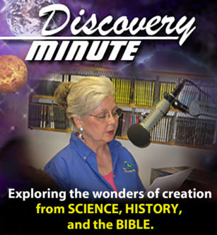 discovery_minute